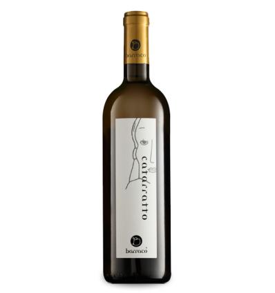Catarratto Fermo IGP Terre Siciliane - Vino bianco