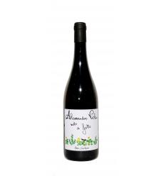 Note di Grillo terre siciliane (Alessandro Viola) - Vino bianco